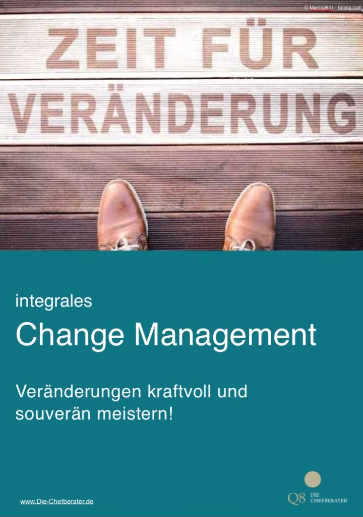 Change_Mangement_-ebook_25_01_2015_Kopie_2_pages